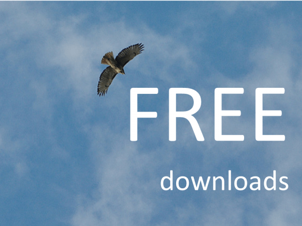 FREE downloads Conveniencetrend